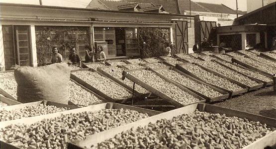 A Indústria Corticeira e o Barreiro